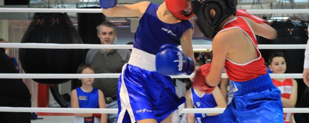 Открытый ринг по боксу — 17 ноября — БК Ударник на Шоссе Энтузиастов