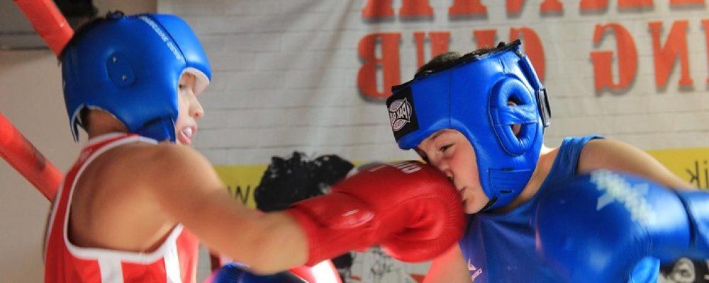Открытый ринг по боксу — 20 октября — БК Ударник на Кожуховской